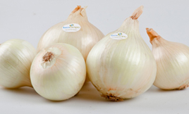Qué es la Cebolla Dulce Fuencampo
